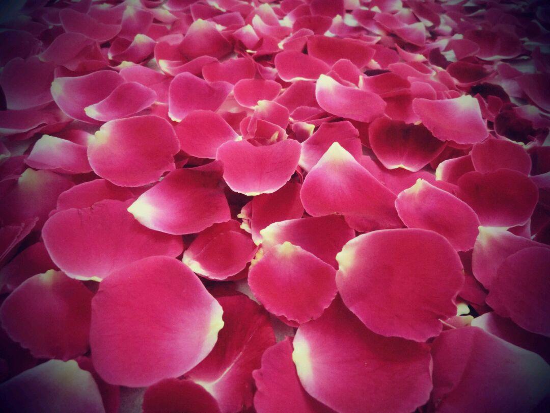 玫瑰花酱的做法步骤