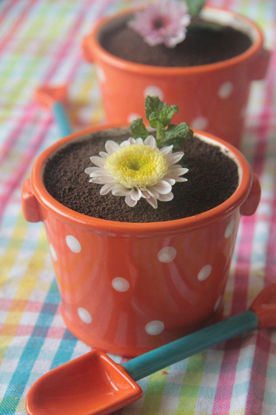 春天的应景甜品---可爱小盆栽的做法步骤