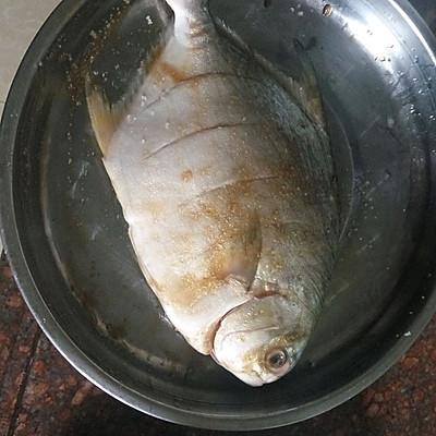 清蒸金鲳鱼的排骨-美食-豆果菜谱移动版做法发绿霉图片