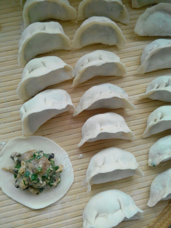 美味的饺子的做法图解5