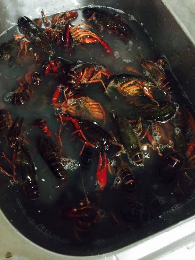 蒜泥小龙虾的做法步骤