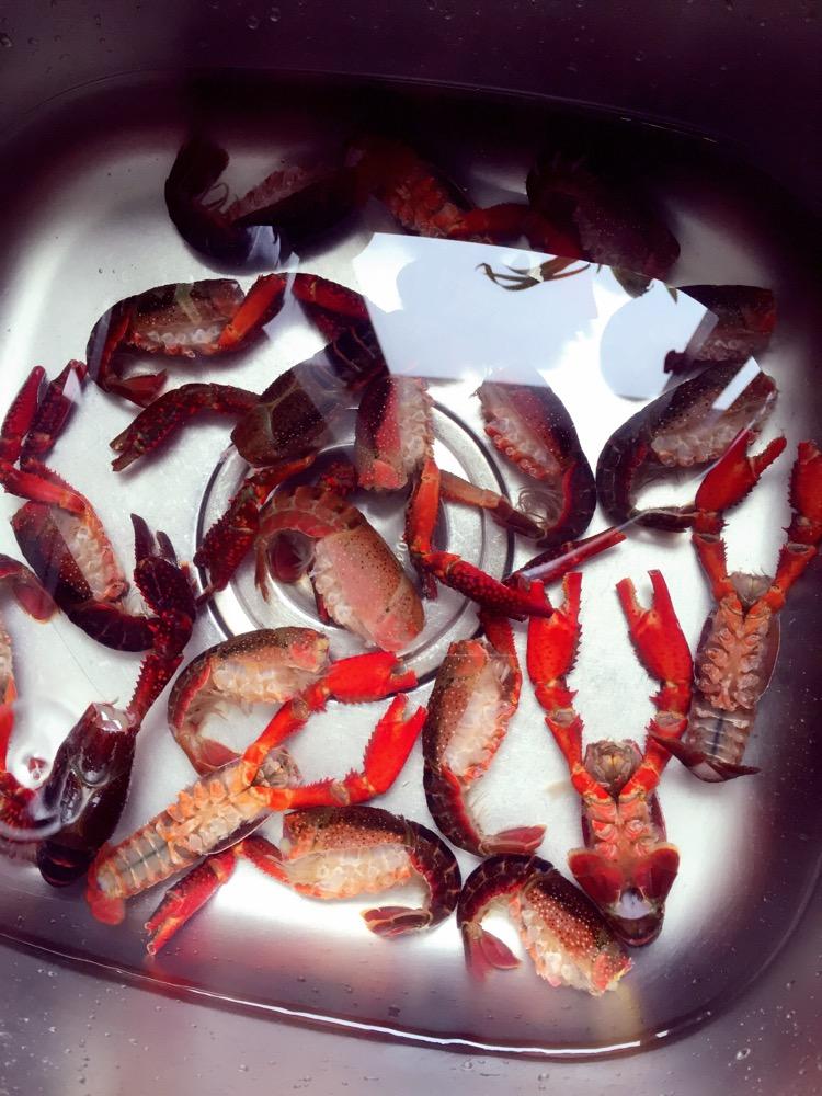 宝宝也爱吃的小龙虾的做法步骤 1. 处理好的龙虾一定是很干净的!