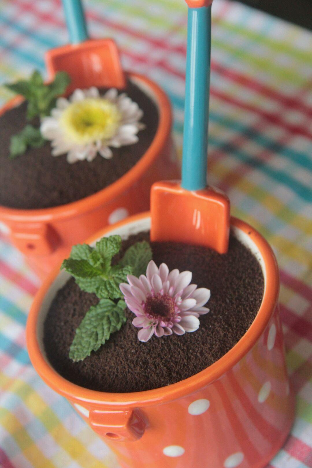 新鲜水果适量 春天的应景甜品---可爱小盆栽的做法步骤 分类
