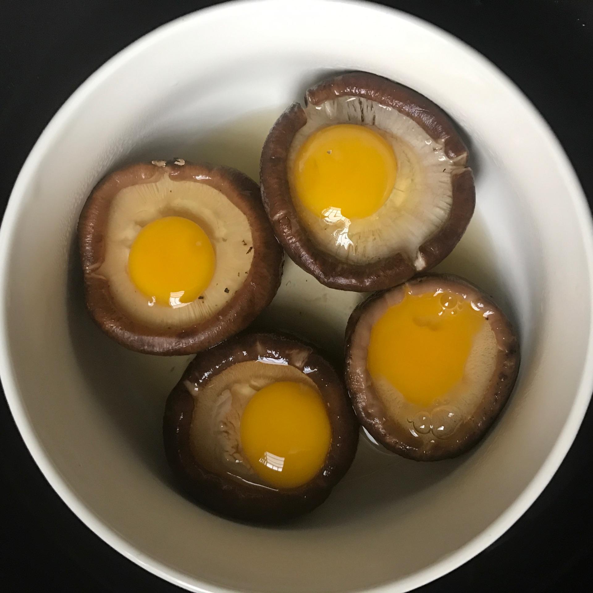 海带蒸孕妇蛋香菇鹌鹑吃多了好吗图片