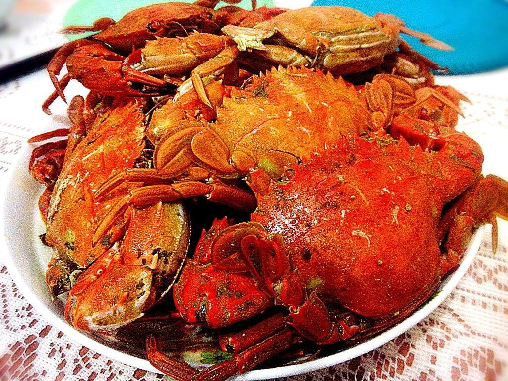 海蟹的种类和图片介绍