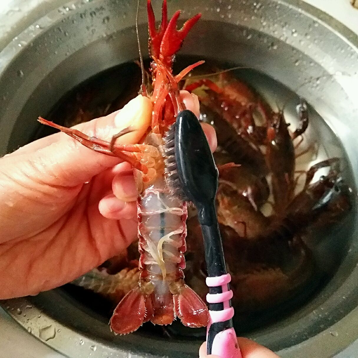 麻辣小龙虾的做法步骤 2.