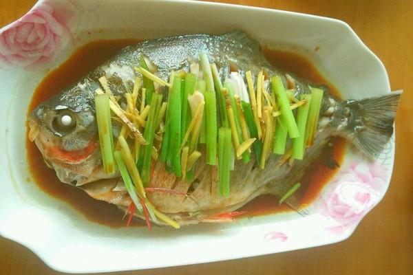 姜适量 生抽适量 芹菜适量 白糖适量 食用油适量 清蒸鱼的做法步骤 4.