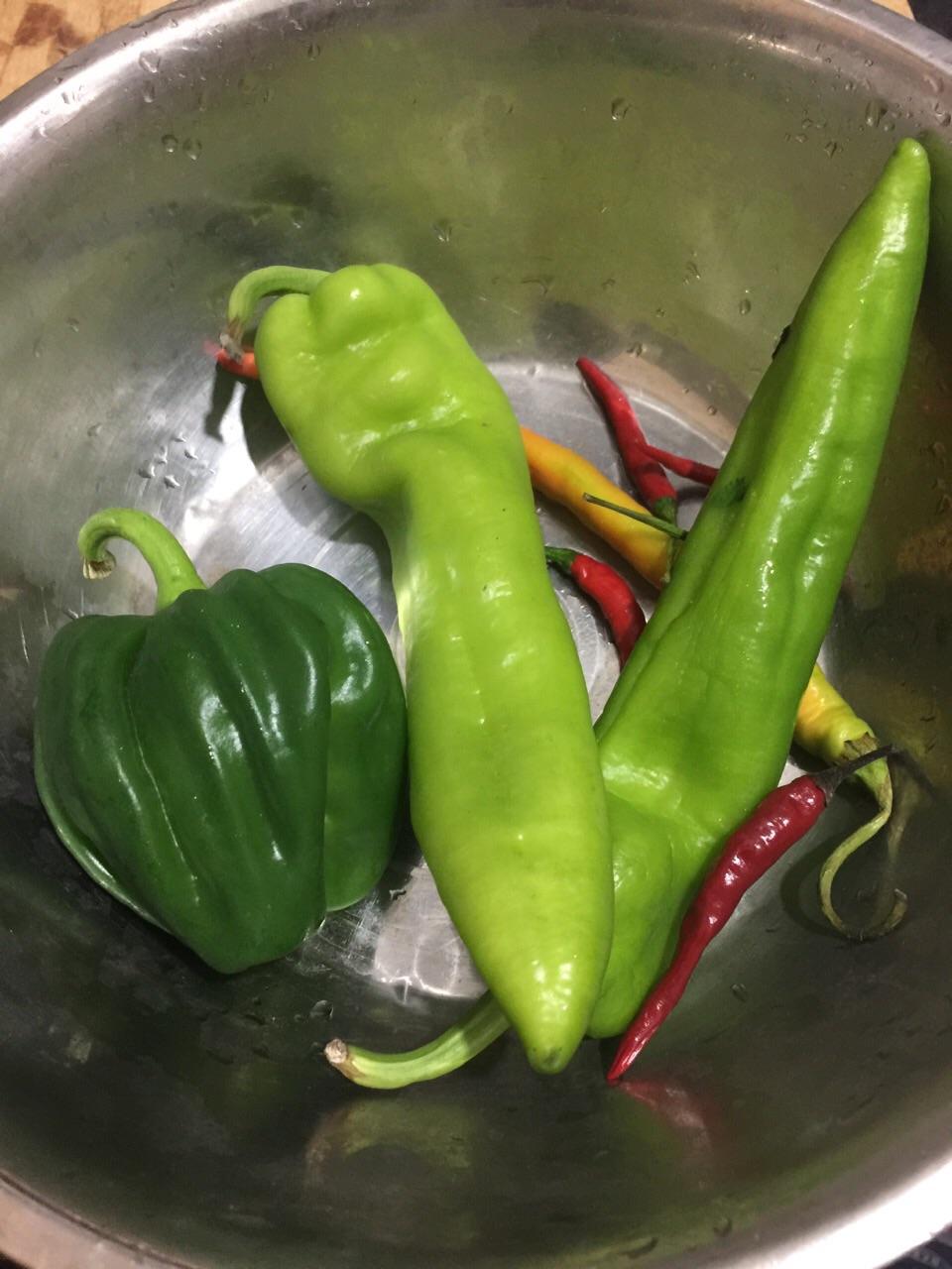 辣椒白豆干的做法步骤 3.