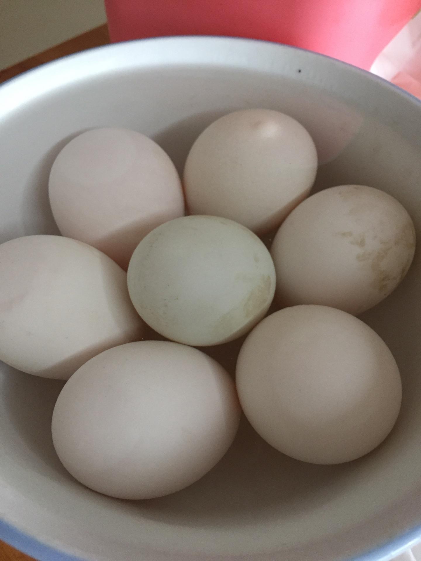 腌咸鸭蛋的做法图解2
