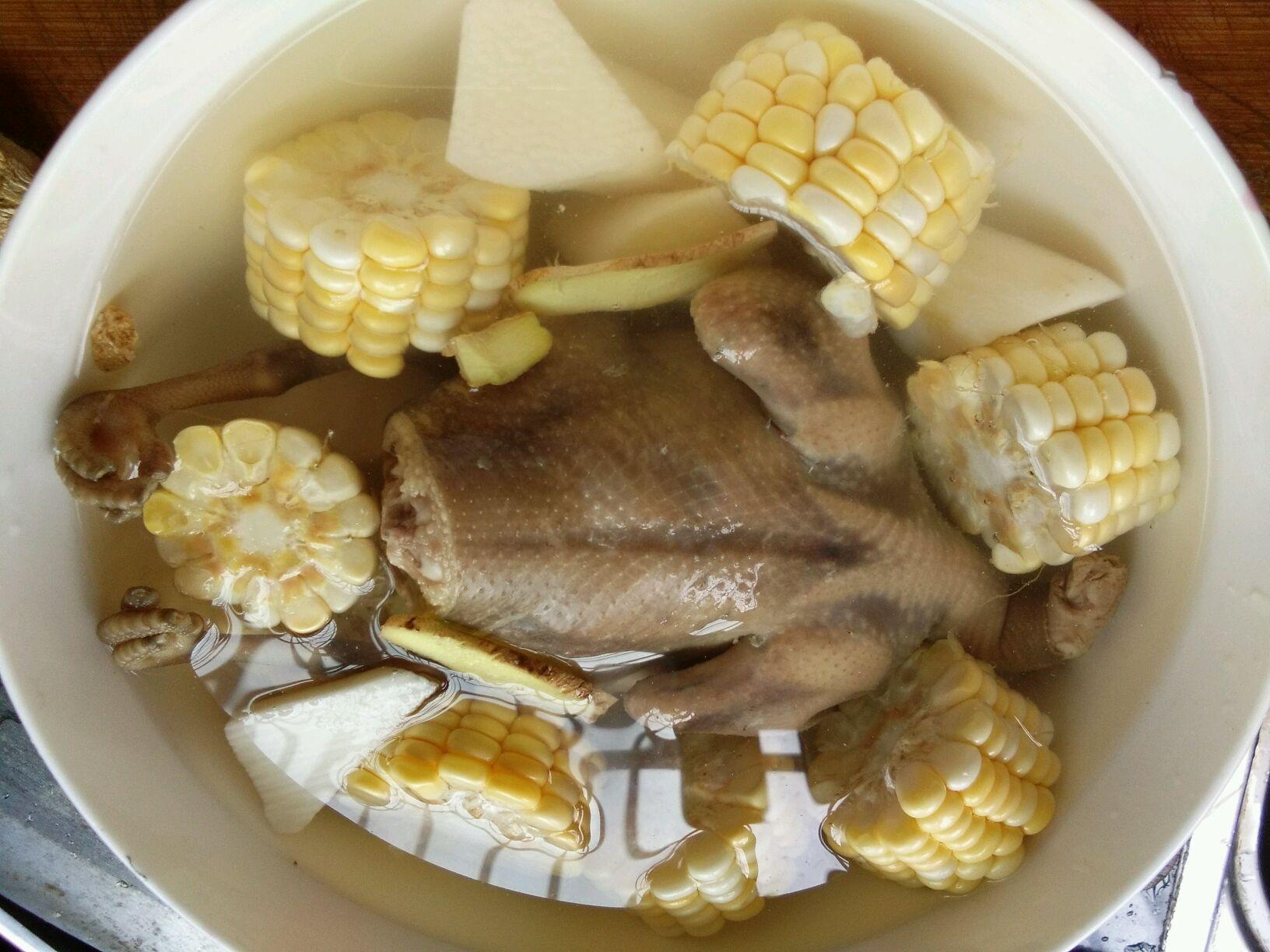 玉米鸽子山药汤重庆鳄鱼v玉米加盟图片
