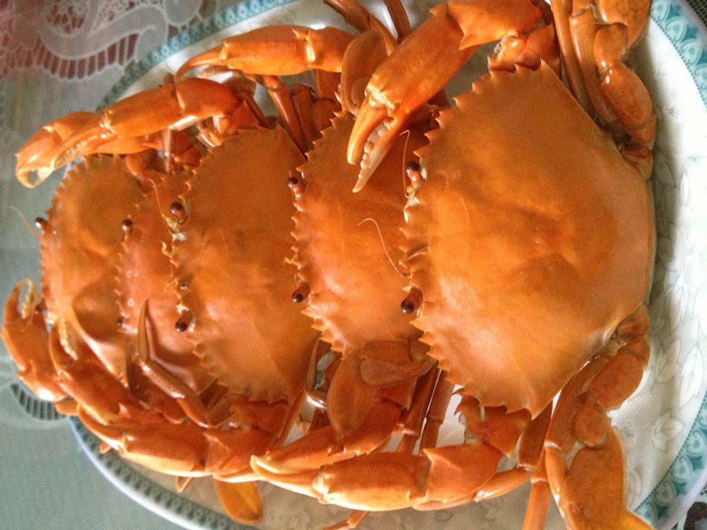 简单螃蟹的蒸做法的易学_菜谱_豆果油饼小菜美食谱图片
