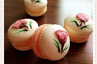 樱花季的美——樱花马卡龙