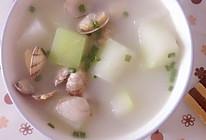 文蛤冬瓜汤的做法
