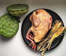 夏日懒人清补汤:霸王花鲜莲子炖鸽汤的做法
