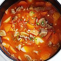 西红柿土豆炖牛腩的做法图解6