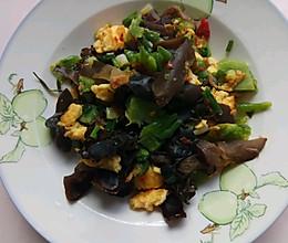 #炎夏消暑就吃「它」#苦瓜木耳炒蛋的做法