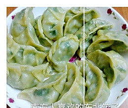 韭菜猪肉陷饺子(自制饺子皮)~的做法