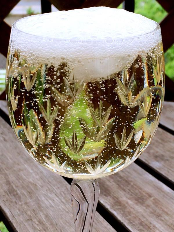 梅雨季节做梅汁的做法