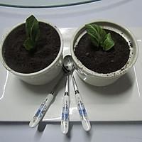 小盆栽的做法图解12