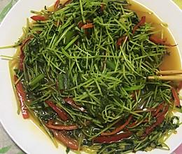 豆苗红椒的做法