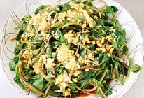 [凉拌马齿苋]采摘野菜,棒棒哒!的做法