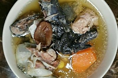 乌鸡水鱼汤