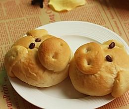 粗粮小猪面包的做法