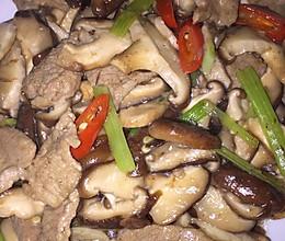 鲜香菇炒肉的做法