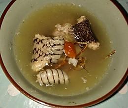 五指毛桃蛇汤的做法