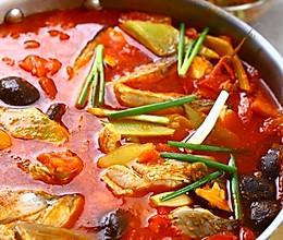 简易酸汤鱼的做法