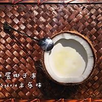 椰子冻盆栽--如何自制椰子冻的做法图解5