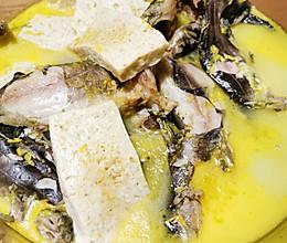 黄辣丁炖豆腐的做法