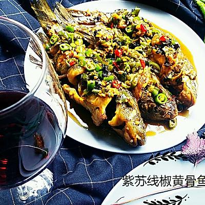 紫苏线椒黄骨鱼
