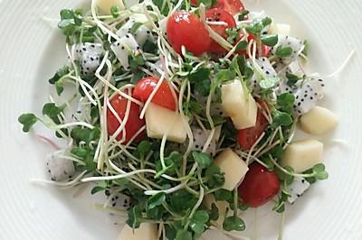 减肥清淡沙拉_萝卜苗蔬果沙拉