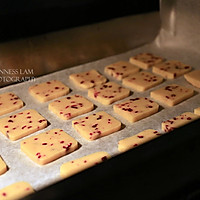 减糖版无添加【蔓越莓饼干】的做法图解6