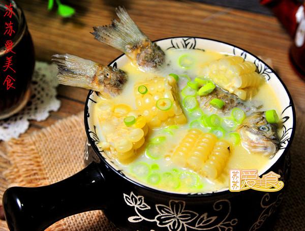 秋季滋补鲜美鱼汤炖起来【鲫鱼玉米汤】——熬出奶白鲫鱼汤的秘方