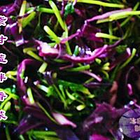紫甘蓝拌香菜
