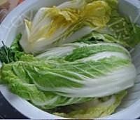 韩式辣白菜的做法图解5