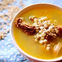 薏米鸽子汤