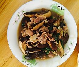 蚝油香菇炒肉片的做法