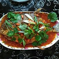 茄汁鱼的做法图解9