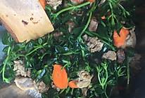 田七菜炒肉的做法