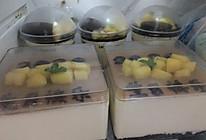 黄桃酸奶慕斯蛋糕盒(杯)的做法
