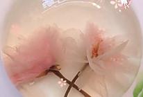 樱花果冻的做法