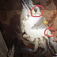 香辣梭子蟹烩年糕的做法图解7