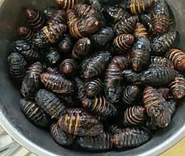 水煮蚕蛹的做法