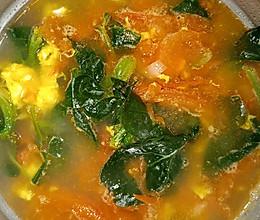 西红柿菠菜鸡蛋汤的做法