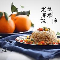 杂蔬糙米发芽饭的做法图解9