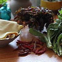 香椿拌豆皮---最有味道的凉菜的做法图解1
