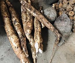 自制木薯粉的做法
